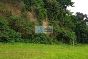 lot-for-sale-near-pristina-north-talamban-lot-3-profile