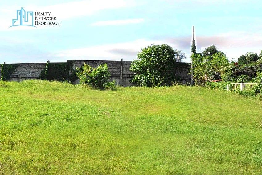 mandaue-city-lot-for-sale-land-3