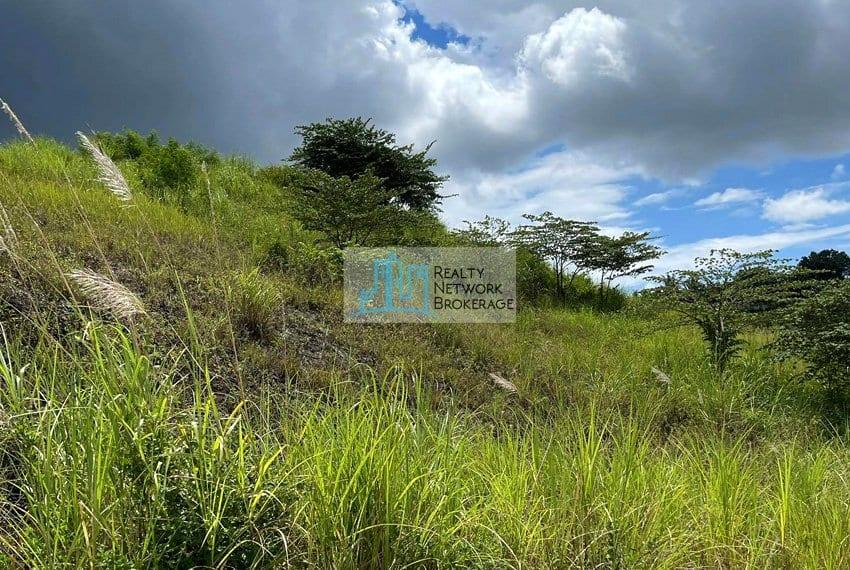 resale-previya-hills-lot-for-sale-land-1
