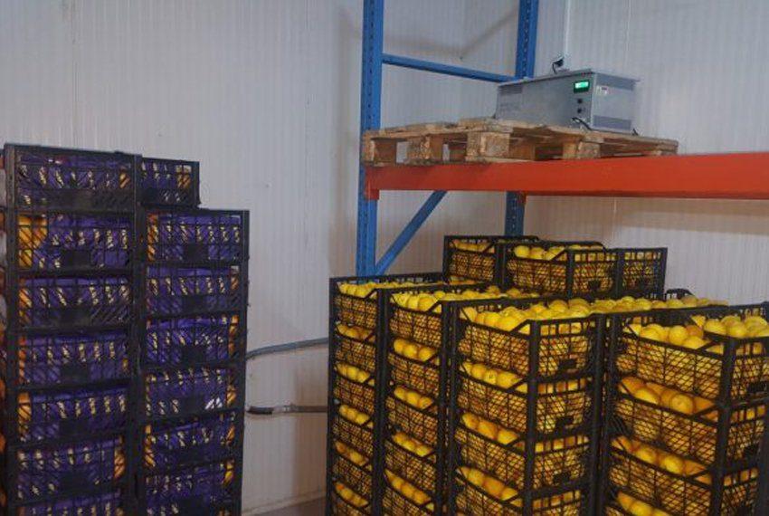 cold-storage-philippines-696x392-1-profile