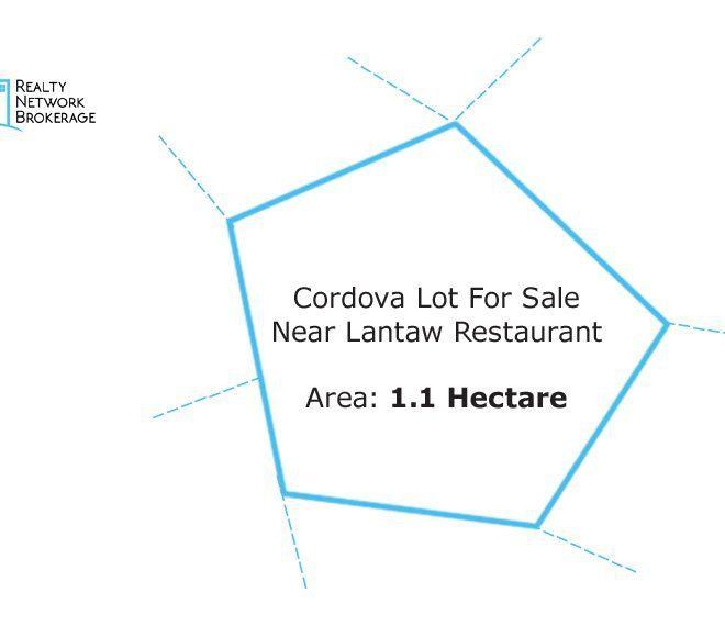 lot-for-sale-in-cordova-near-lantaw-restaurant-lot-plan-profile