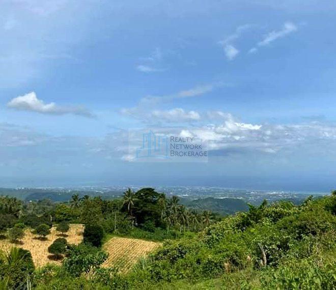 22-hectares-titled-lot-for-sale-in-san-fernando-cebu-03jpg-profile